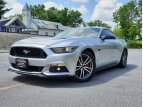 2016 Ford Mustang GT for sale 101532568
