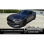 2016 Ford Mustang Shelby GT350 for sale 101557162