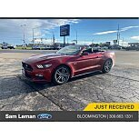 2016 Ford Mustang GT Premium for sale 101627433