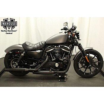 2016 Harley-Davidson Sportster for sale 200583691