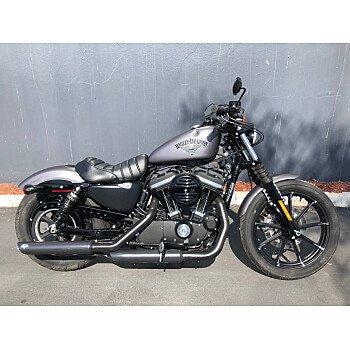 2016 Harley-Davidson Sportster for sale 200702381