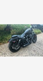 2016 Harley-Davidson Sportster for sale 200779030