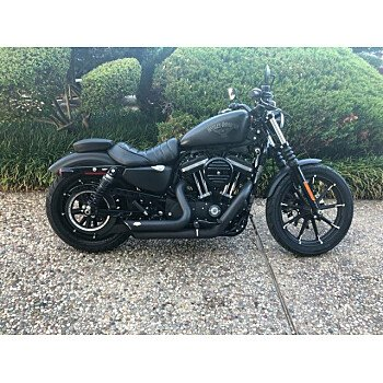 2016 Harley-Davidson Sportster for sale 200779030