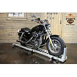 2016 Harley-Davidson Sportster for sale 200783420