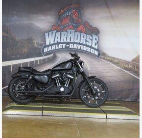 2016 Harley-Davidson Sportster for sale 200972667