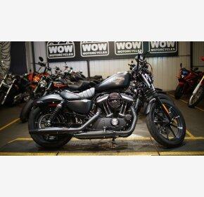 2016 Harley-Davidson Sportster for sale 200987505