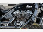 2016 Indian Scout for sale 201161556