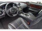 2016 Jaguar XJ for sale 101492648