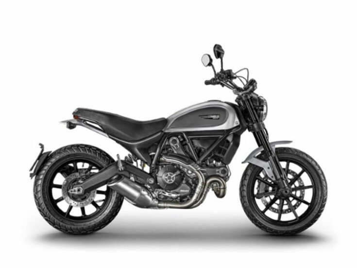 2017 Ducati Scrambler 800 for sale 201073427