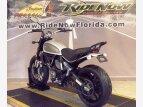 2017 Ducati Scrambler 800 for sale 201113065