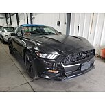 2017 Ford Mustang Coupe for sale 101616086