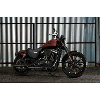2017 Harley-Davidson Sportster Iron 883 for sale 200655983
