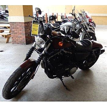 2017 Harley-Davidson Sportster Iron 883 for sale 200705867