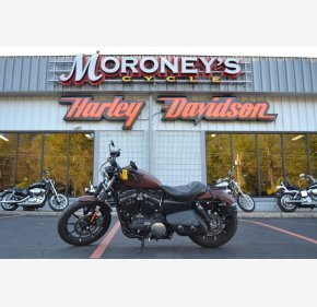 2017 Harley-Davidson Sportster Iron 883 for sale 200643552