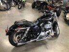 2017 Harley-Davidson Sportster Custom for sale 200676750