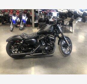 2017 Harley-Davidson Sportster Iron 883 for sale 200702453