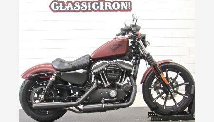2017 Harley-Davidson Sportster Iron 883 for sale 200703888