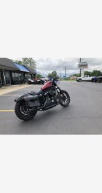 2017 Harley-Davidson Sportster Iron 883 for sale 200725769