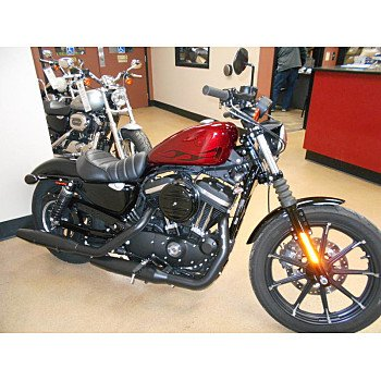 2017 Harley-Davidson Sportster for sale 200734569