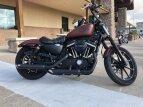 2017 Harley-Davidson Sportster Iron 883 for sale 200789622