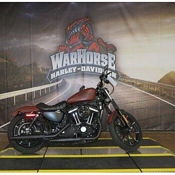 2017 Harley-Davidson Sportster Iron 883 for sale 200812082