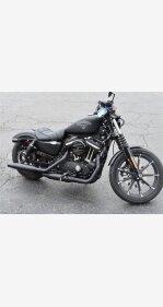2017 Harley-Davidson Sportster Iron 883 for sale 200913988