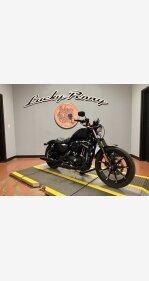 2017 Harley-Davidson Sportster for sale 200949453