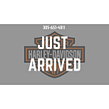 2017 Harley-Davidson Sportster Iron 883 for sale 200951436