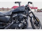 2017 Harley-Davidson Sportster Iron 883 for sale 201069973