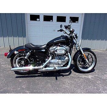 2017 Harley-Davidson Sportster SuperLow for sale 201111586