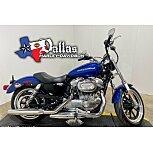 2017 Harley-Davidson Sportster SuperLow for sale 201119318
