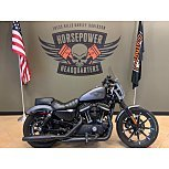 2017 Harley-Davidson Sportster Iron 883 for sale 201139057