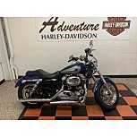 2017 Harley-Davidson Sportster Custom for sale 201165244