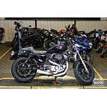 2017 Harley-Davidson Sportster Custom for sale 201165323
