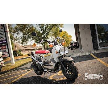 2017 Honda Ruckus for sale 200582032