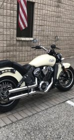 2017 Indian Scout for sale 200857615