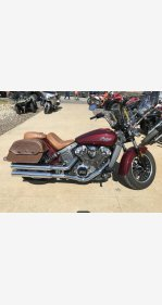 2017 Indian Scout for sale 200906884