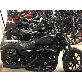 2018 Harley-Davidson Sportster Iron 883 for sale 200683405