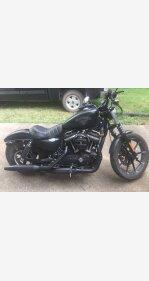 2018 Harley-Davidson Sportster Iron 883 for sale 200623341