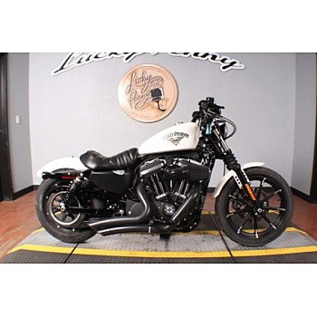 2018 Harley-Davidson Sportster Iron 883 for sale 200781893