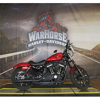 2018 Harley-Davidson Sportster Iron 883 for sale 200812072