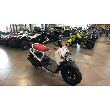 2018 Honda Ruckus for sale 200687389