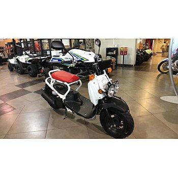 2018 Honda Ruckus for sale 200687391