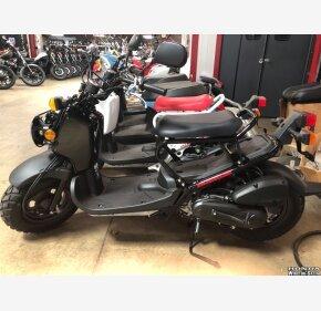 2018 Honda Ruckus for sale 200525384