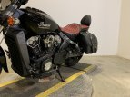 2018 Indian Scout for sale 201093597