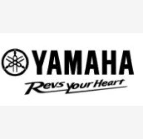 2018 Yamaha MT-07 for sale 200708219