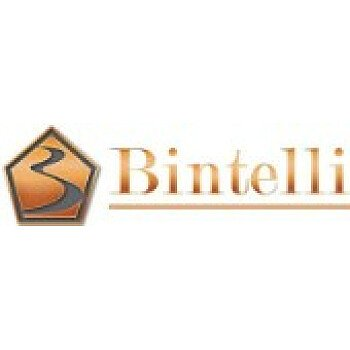 2019 Bintelli Scorch for sale 200618477
