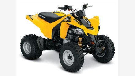 2019 Can-Am DS 250 for sale 200632608
