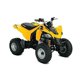 2019 Can-Am DS 250 for sale 200726206