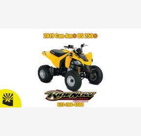 2019 Can-Am DS 250 for sale 200761859